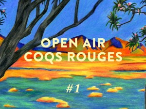 1ère édition de l'Open Air Coqs Rouges le dimanche 4 Juin.